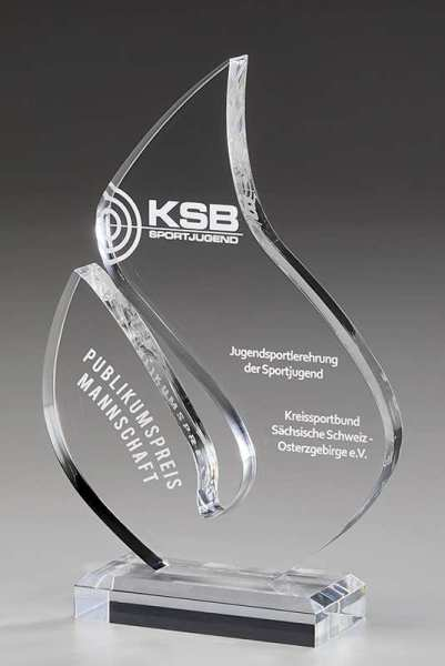 Brilliance klarer Acrylglas Award